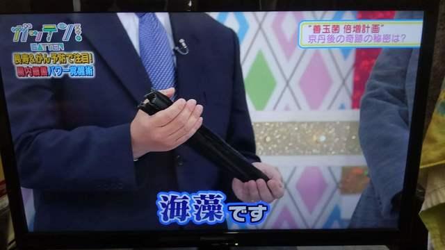 2019長寿研究(51).jpg