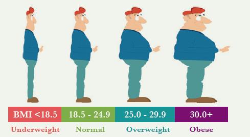 BMI-Index.png