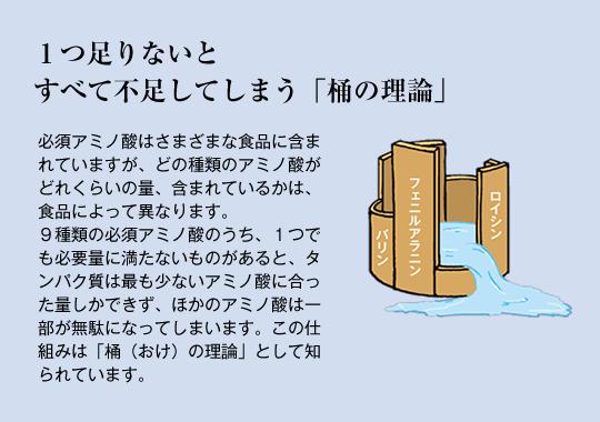 アミノ酸スコア「桶の論理」.png