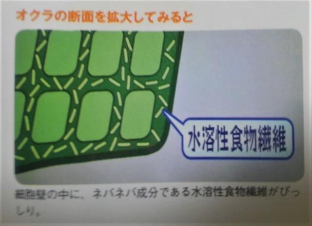 コンビニ弁当3 (12).jpg