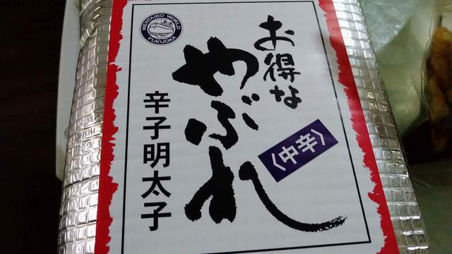 九州上陸(16).jpg