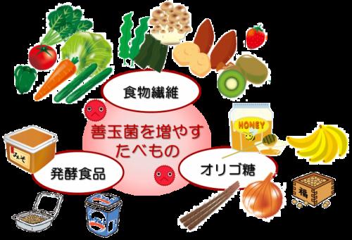 善玉菌を増やす食べ物.png