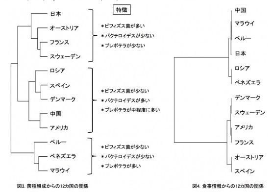 日本人と外国11か国の腸内細菌.jpg