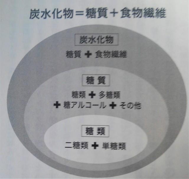 炭水化物の分類01.jpg