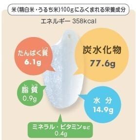 精白米の栄養成分.jpg