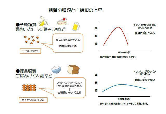 糖質の種類と血糖値の上昇.jpg