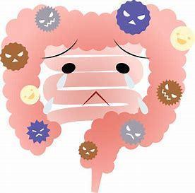 糖質制限で悪化した腸内環境.jpg