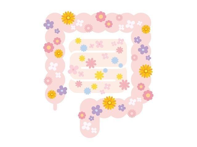 腸内お花畑.jpg