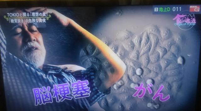 食の起源【5】 (5).jpg