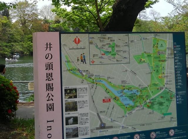 tokyo walking (2).jpg