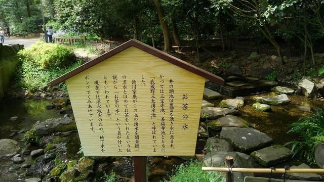 tokyo walking (4).jpg